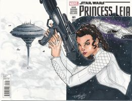 Princess Leia by BrianVander