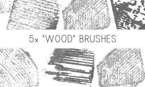Wood Brushes by PinkMai
