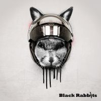 Black Rabbits CD cover by Trueneox