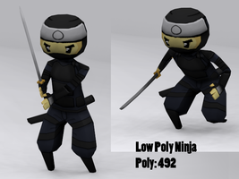 Ninja by KidneyShake