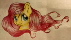 Collab with RivaMon. Fluttershy by SouppyMan