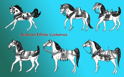 arabian horse costumes by Refiner