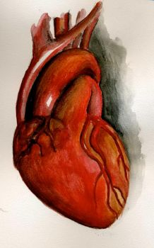 heart by whigger