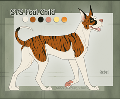 STS Dog- Rebel by ShockTherapyStables
