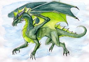 Green Dragon by Naseilen
