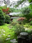 Shrine Garden by DracoFeathers