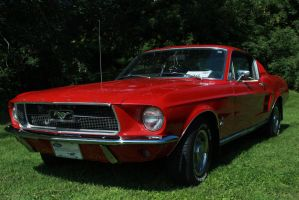 Stunning Fastback by KyleAndTheClassics