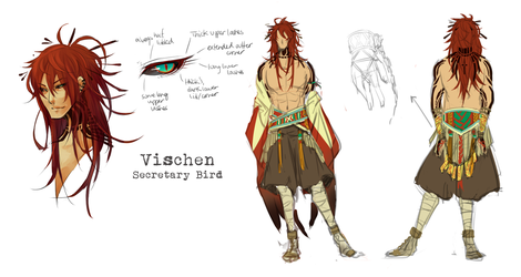 :Vischen: Design Sheet by Chuuchichu
