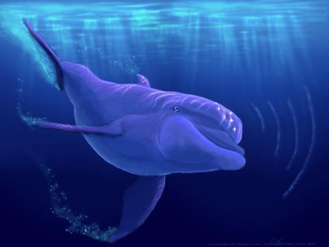 A Song of Hope -Edited- by maui-dolphin