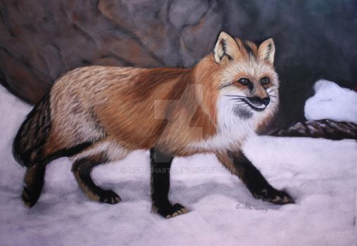 Fox in the Snow by MsTechArt