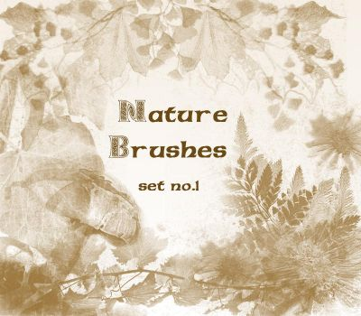 Nature Brushes set.1 by wyckedBrush
