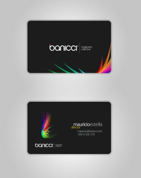 banicci Logo and Business Card by mauricioestrella