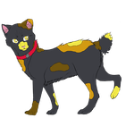 Cat Adopt | Closed by oOFrosteehOo