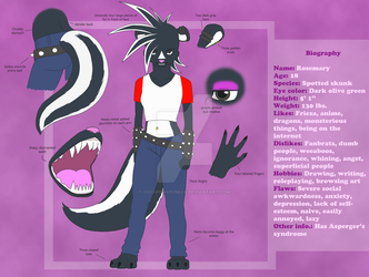 Reference Sheet Commission SAMPLE #1 by ooCupcake256xx