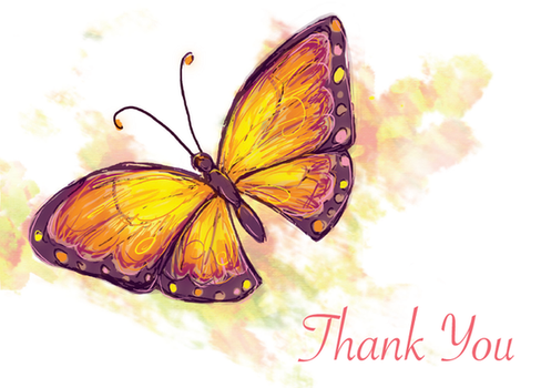 MG - Butterfly Thank You by Schlady