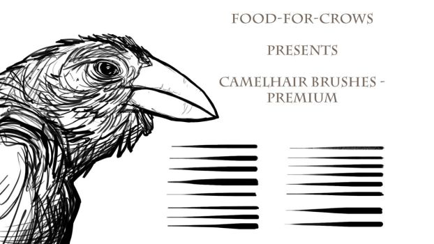 Camelhair Premium Brush Set by Food-For-Crows