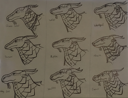 Wings of Fire: Seawing Character Studies by Iron-Zing