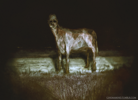 Moocow by cinemamind