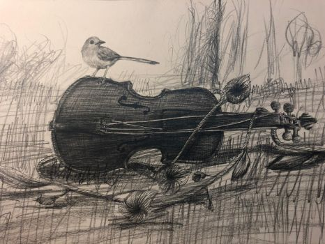 Violin and little bird by arasacer