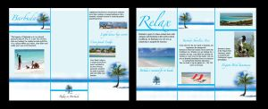 barbuda travel brochure by Goldphishy