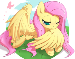 Fluttershy by aymint