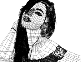 Vector Self Portrait wireframe by natashamurray911