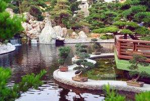 Chinese pond by ForestGirlStock