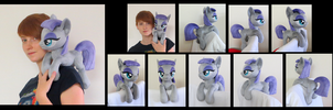 Shoulder Maud Filly (Sold) by fireflytwinkletoes