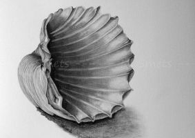 shell by photonline