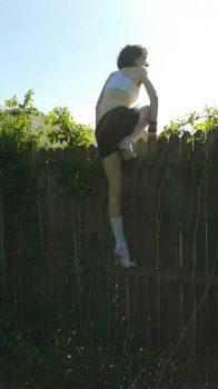 Fence Climbing 6 by Sparky--Stock