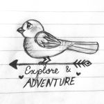 Explore and Adventure by veeeester400