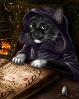 My Cat's a Wizard by Emortal982