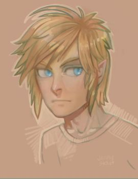 Link Doodle by EponaN64