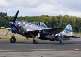 Republic P-47D Taxi by shelbs2
