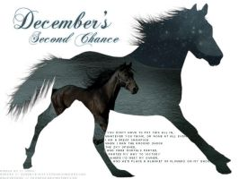December's Second Chance by altered-humanity