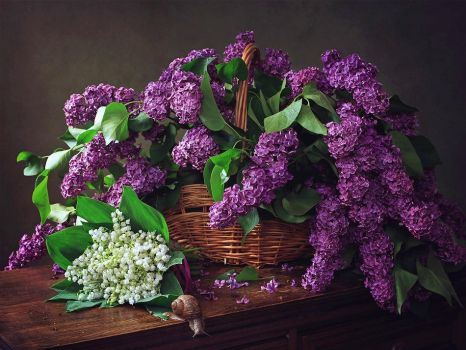 Still life with a basket of lilacs by Daykiney