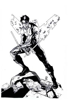 Ace Nightwing inks by 7daywalk