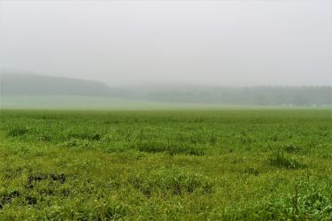 Misty field in Nakashibetsu by Furuhashi335