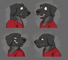Commission: Dylan's Expression Sheet by Temiree