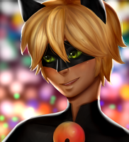 Cat Noir by thecocomero