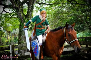 Fight on with Link and Epona by yuanie