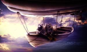 Fly by Rungue