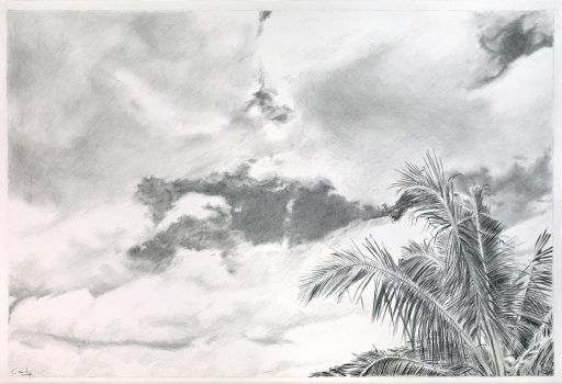 Sky, Clouds and Coconut Trees by Denish-C