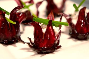 Goat Cheese Flowers II by LDFranklin