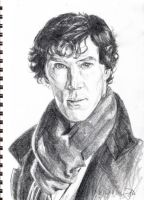 Sherlock by captainhawkeh