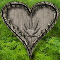 Pot Heart by RodneyzPc