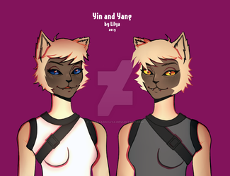 Yin and Yang by LilyaSadovaya