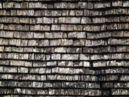 Cedar Shingle Roof 03 by Limited-Vision-Stock