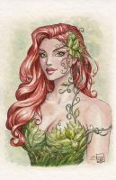 Poison Ivy Watercolor by Sabinerich