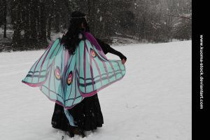 Winter Moth 2 by Kuoma-stock